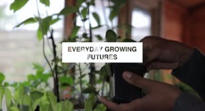 IMAGE 2 - everyday growing futures